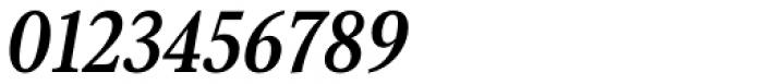 Senlot Serif Norm Bold Italic Font OTHER CHARS
