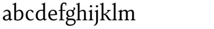Senlot Serif Norm Book Font LOWERCASE