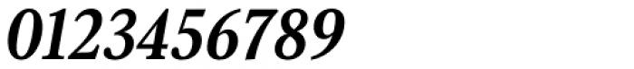 Senlot Serif Norm Ex Bold Italic Font OTHER CHARS