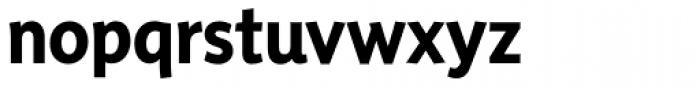 Sensibility Bold Font LOWERCASE