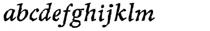 Sepia Italic Font LOWERCASE