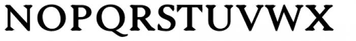 Serenity Font Duo Serif Heavy Font UPPERCASE