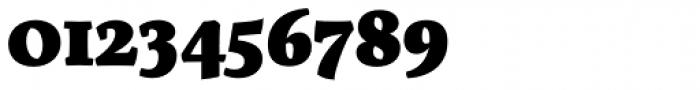 Servus Slab Black Font OTHER CHARS
