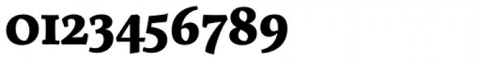 Servus Slab Bold Font OTHER CHARS