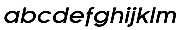 SF Florencesans Exp Bold Italic Font LOWERCASE