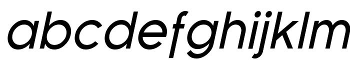 SF Florencesans Italic Font LOWERCASE