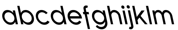 SF Florencesans Rev Italic Font LOWERCASE