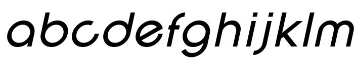 SF New Republic Italic Font LOWERCASE