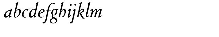 SG Cloister Old Style SB Roman Italic Font LOWERCASE