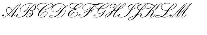 SG Englische Schreibschrift SB Regular Font UPPERCASE