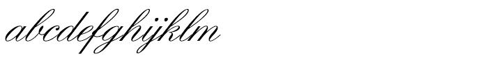 SG Englische Schreibschrift SB Regular Font LOWERCASE