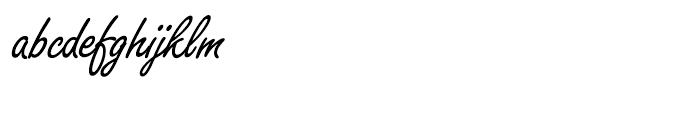 SG Freestyle Script SB Regular Alternative Font LOWERCASE