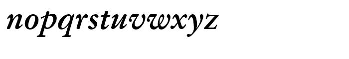 SG Garamond No 1 SB Medium Italic Font LOWERCASE