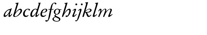 SG Garamond No 1 SB Roman Italic Font LOWERCASE