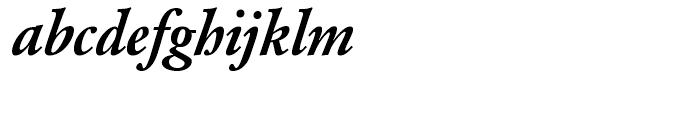 SG Garamond No 2 SB Medium Italic Font LOWERCASE