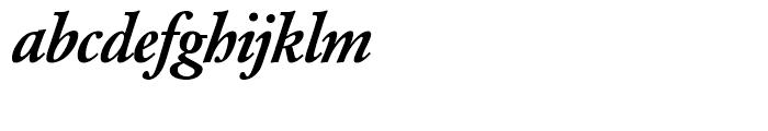 SG Garamond No 2 SH Medium Italic Font LOWERCASE