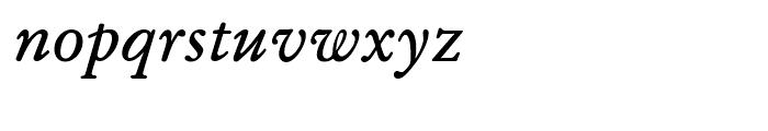 SG Garamond SB Roman Italic Font LOWERCASE