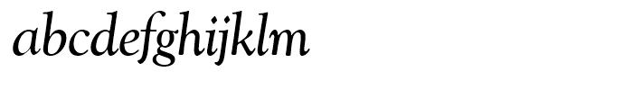 SG Goudy Catalogue SH Italic Font LOWERCASE