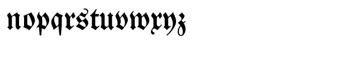 SG Neue Luthersche Fraktur SB Medium Font LOWERCASE