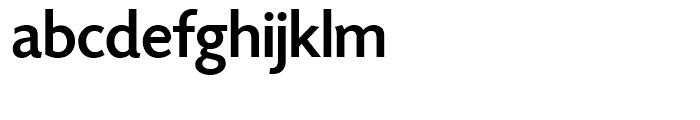 SG Today Sans Serif SH Medium Font LOWERCASE