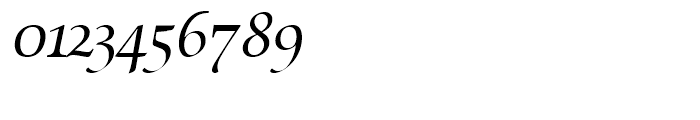 SG Zapf Renaissance Antiqua SB Book Italic Swashed Font OTHER CHARS