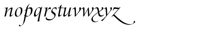 SG Zapf Renaissance Antiqua SB Book Italic Swashed Font LOWERCASE
