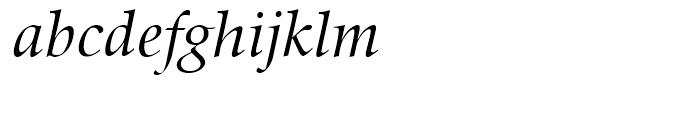 SG Zapf Renaissance Antiqua SB Book Italic Font LOWERCASE