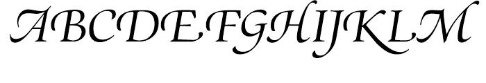 SG Zapf Renaissance Antiqua SH Book Italic Swashed Font UPPERCASE
