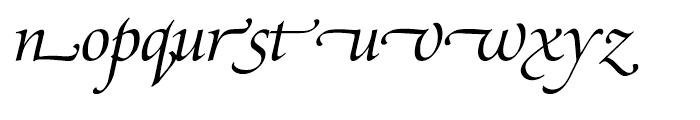 SG Zapf Renaissance Antiqua SH Book Italic Swashed Font LOWERCASE