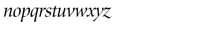 SG Zapf Renaissance Antiqua SH Book Italic Font LOWERCASE