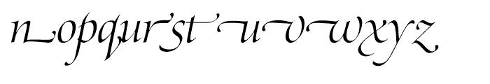 SG Zapf Renaissance Antiqua SH Light Italic Swashed Font LOWERCASE