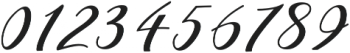 Shany ttf (400) Font OTHER CHARS