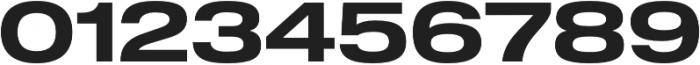 Shapiro 65 Light Heavy Extd otf (300) Font OTHER CHARS
