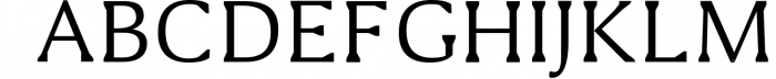 Shaaron A New Serif Font Family 1 Font UPPERCASE