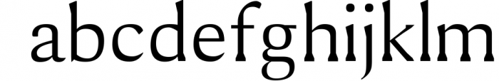 Shaaron A New Serif Font Family 1 Font LOWERCASE