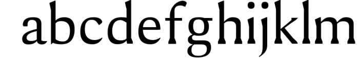 Shaaron A New Serif Font Family Font LOWERCASE