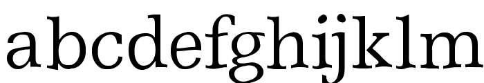 ShakeySlabserif Font LOWERCASE