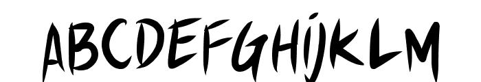 Shin Akiba Punx Font LOWERCASE