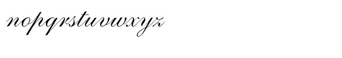 Shelley Script Allegro Font LOWERCASE