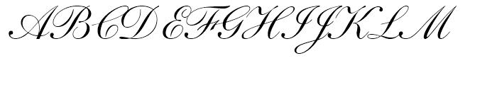 Shelley Script Andante Font UPPERCASE