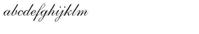 Shelley Script Andante Font LOWERCASE