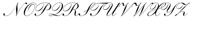 Shelley Script Cyrillic Regular Font UPPERCASE