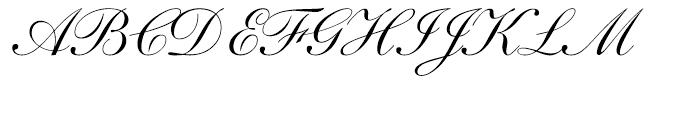 Shelley Script Regular Font UPPERCASE