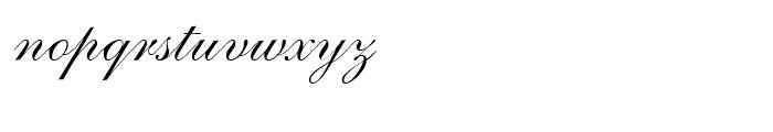 Shelley Script Volante Font LOWERCASE