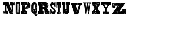 Shelton Slab Font LOWERCASE