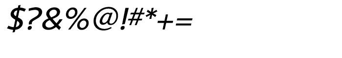 Shinn Book Italic Font OTHER CHARS