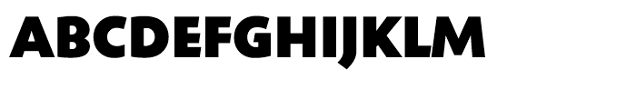 Shinn Extra Bold Font UPPERCASE