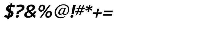 Shinn Medium Italic Font OTHER CHARS
