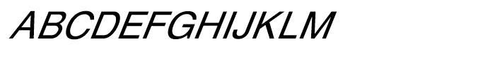 Shree Bangali 1504 Italic Font UPPERCASE