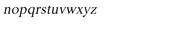 Shree Bangali 1530 Italic Font LOWERCASE